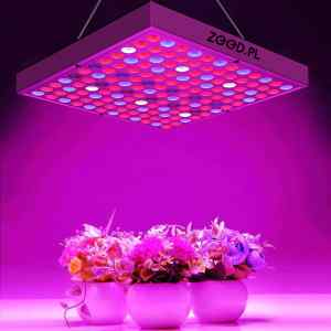 PANEL LED DO UPRAWY ROŚLIN GROWBOX 30W 144 szt LED